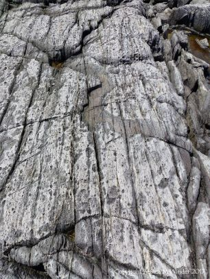 Rocks composed of volcanic ash (tuff) near Louisbourg Lighthouse in cape Breton, Nova Scotia.