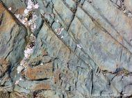 Rock texture in solidified intrusive lava