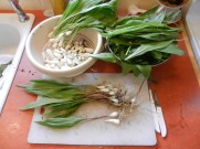 Cleaning the Wild Leeks