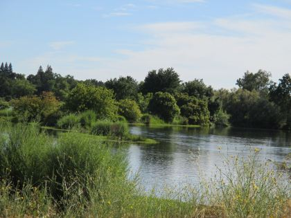 peaceful spot, American River, bikepath