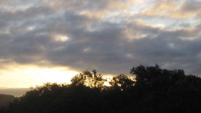 sunrise, mornings, Fair Oaks Bridge, American River, American River Parkway, nature, writing, wildlife, walkers