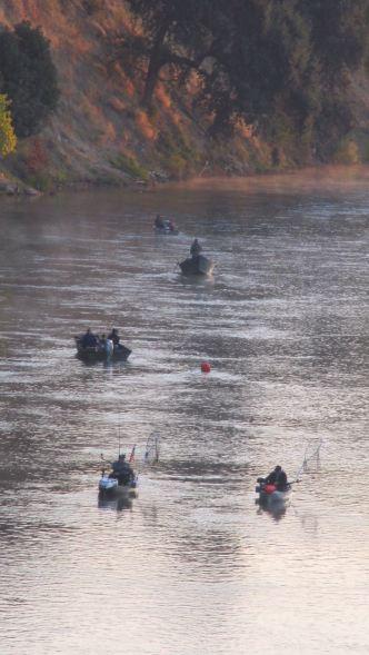 fishermen, boats, American River, Fair Oaks Bridge, morning