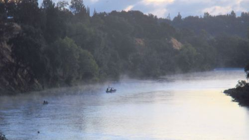fog bank, morning, American River, Fair Oaks Bridge,