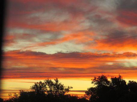 sunrise, mornings, Fair Oaks Bridge, fishermen walkers,