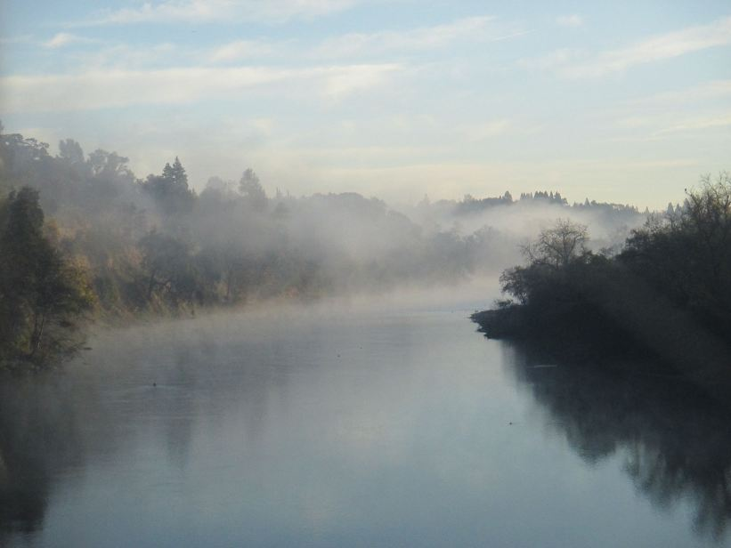 Fair Oaks Bridge, mornings, riverbank, American River, dense fog