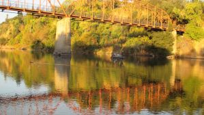 Fair Oaks Bridge, Fair Oaks, American River, mornings, river, wildlife, water, ducks, fishermen, boats,