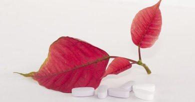 Ovaires polykystiques : l'espoir du resvératrol