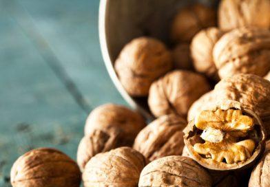 3 excellentes raisons de manger des noix pendant votre 1er trimestre de grossesse