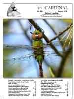 236 web edition cover