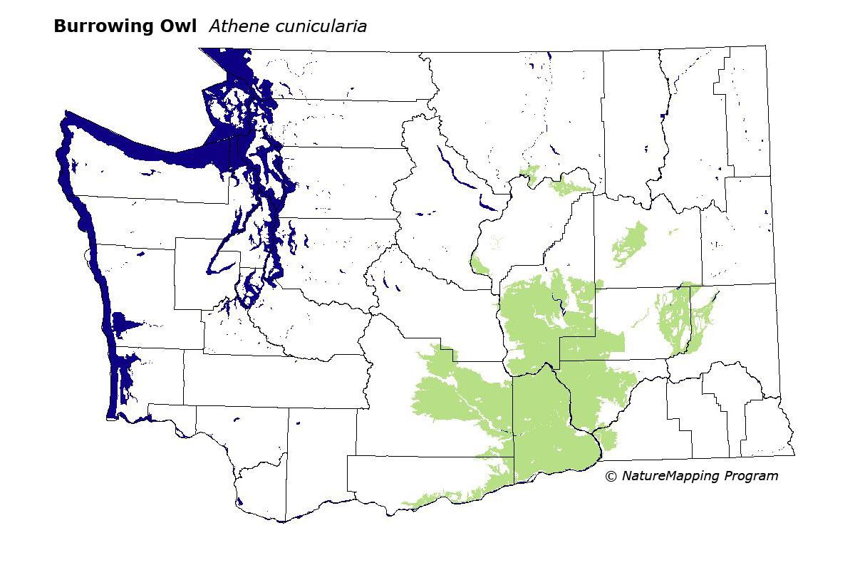 Burrowing Owl Habitat Map