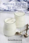 Making Yogurt at Home