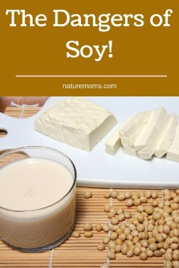 The Dangers of Soy