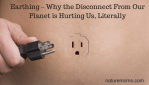 Earthing – Why the Disconnect From Our Planet is Hurting Us, Literally