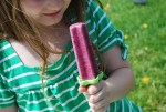 Nourishing Coconut Berry Smoothies and Popsicles