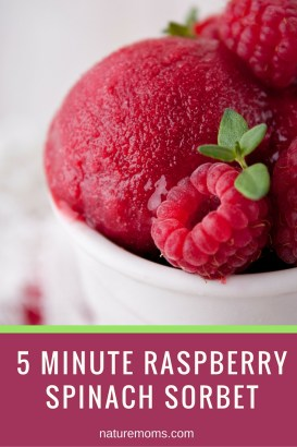 Raspberry Spinach Sorbet