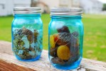 Loving the Ball Jar Heritage Collection