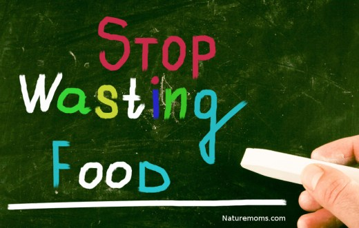 stop wasting food 5 tips