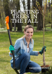Planting Fruit Trees in the Fall