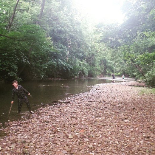creek backyard