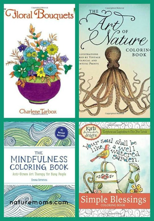 nature coloring books for adults 2