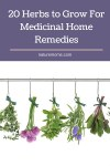 20 Herbs to Grow For Medicinal Home Remedies