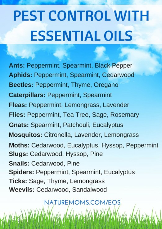 Pest Control Using Essential Oils