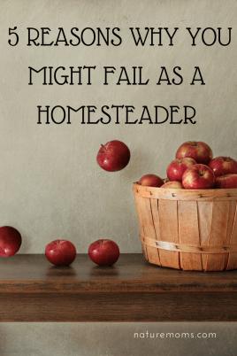 Homestead Failures