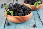 Growing Your Own Blackberries