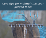 Care tips for maintaining your garden tools in top shape