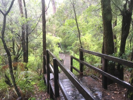The Cascades boardwalk