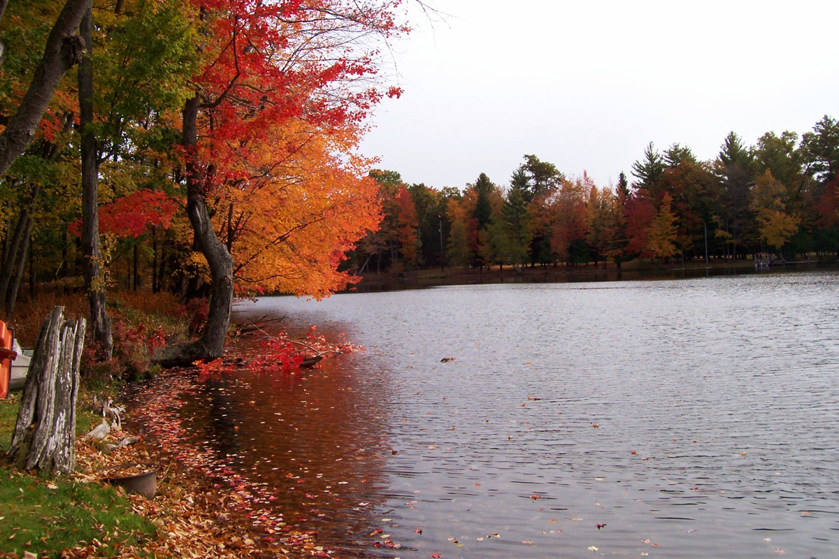 Muskegon River: Henning Park Access - Land Conservancy of