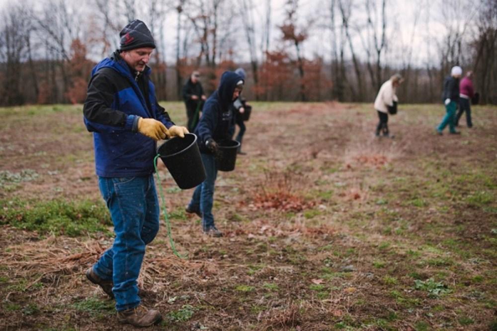 comm-1216-prairie-planting