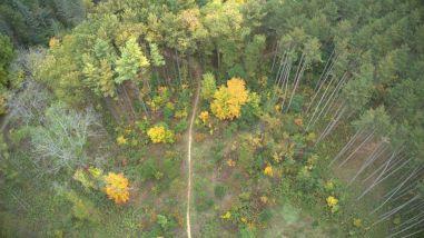 Wege Natural Area