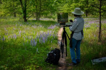 Preserved! artist Kathleen Kalinowski paints at Maas Family Nature Preserve.