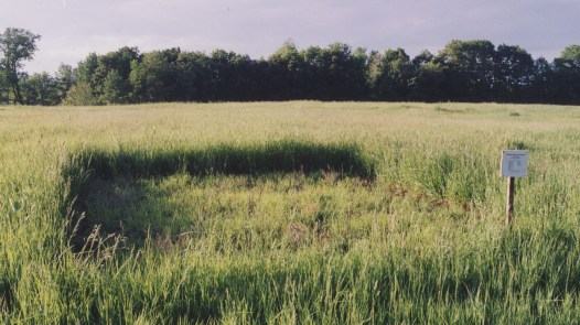 Saul Lake Prairie in 2001.