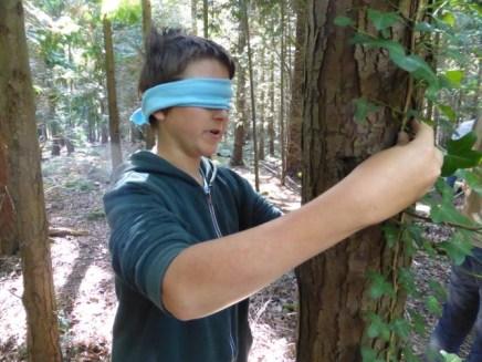 Jonathan Gibson meets a tree