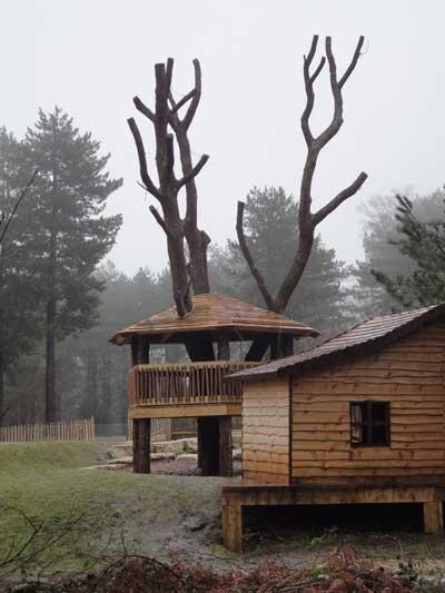 Tree house, West Walk