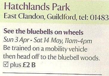 Bluebells on wheels