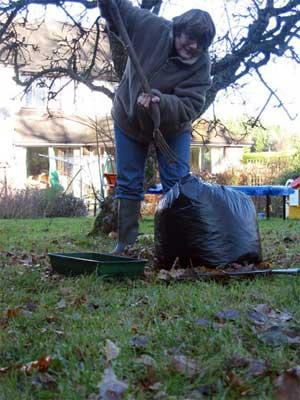 The Wildlife Gardener stabs a bag of leaves