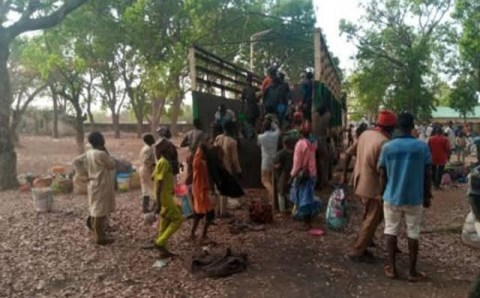 Igbo groups reject Almajirai relocation to Southeast