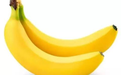 Reason why Bananas are curved