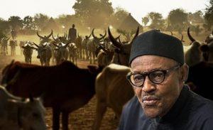 Herdsmen: Miyetti Allah Issues Fresh Directive To Buhari