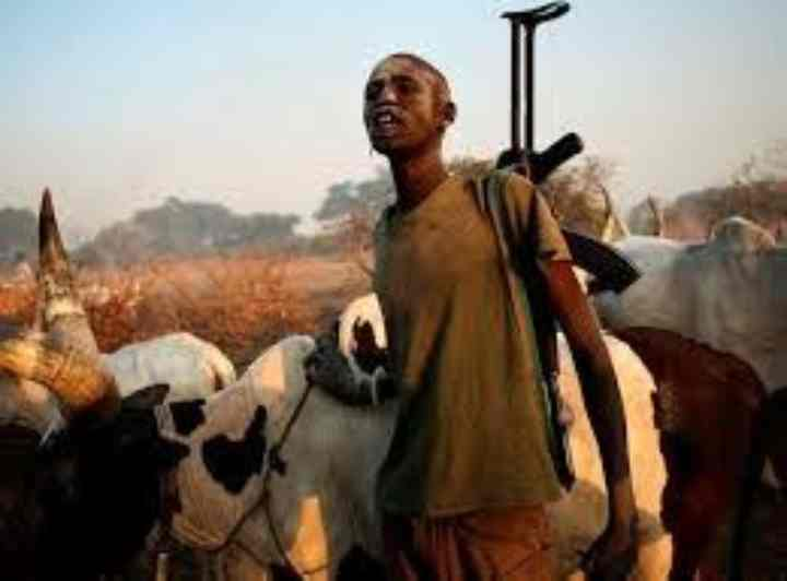 Trouble As Herdsmen Left Something Behind After Carrying Out Their Operations In Ebonyi State
