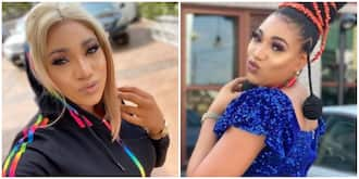 AGN suspends Nollywood actress Hilbert Queeneth over misconduct