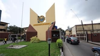 UniLag: Two 'sex-for-grade' lecturers sacked