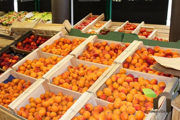 Naturenville - primeur de fruits & légumes bio & de producteurs locaux - Photographe - Thomas THIEBAUT-48