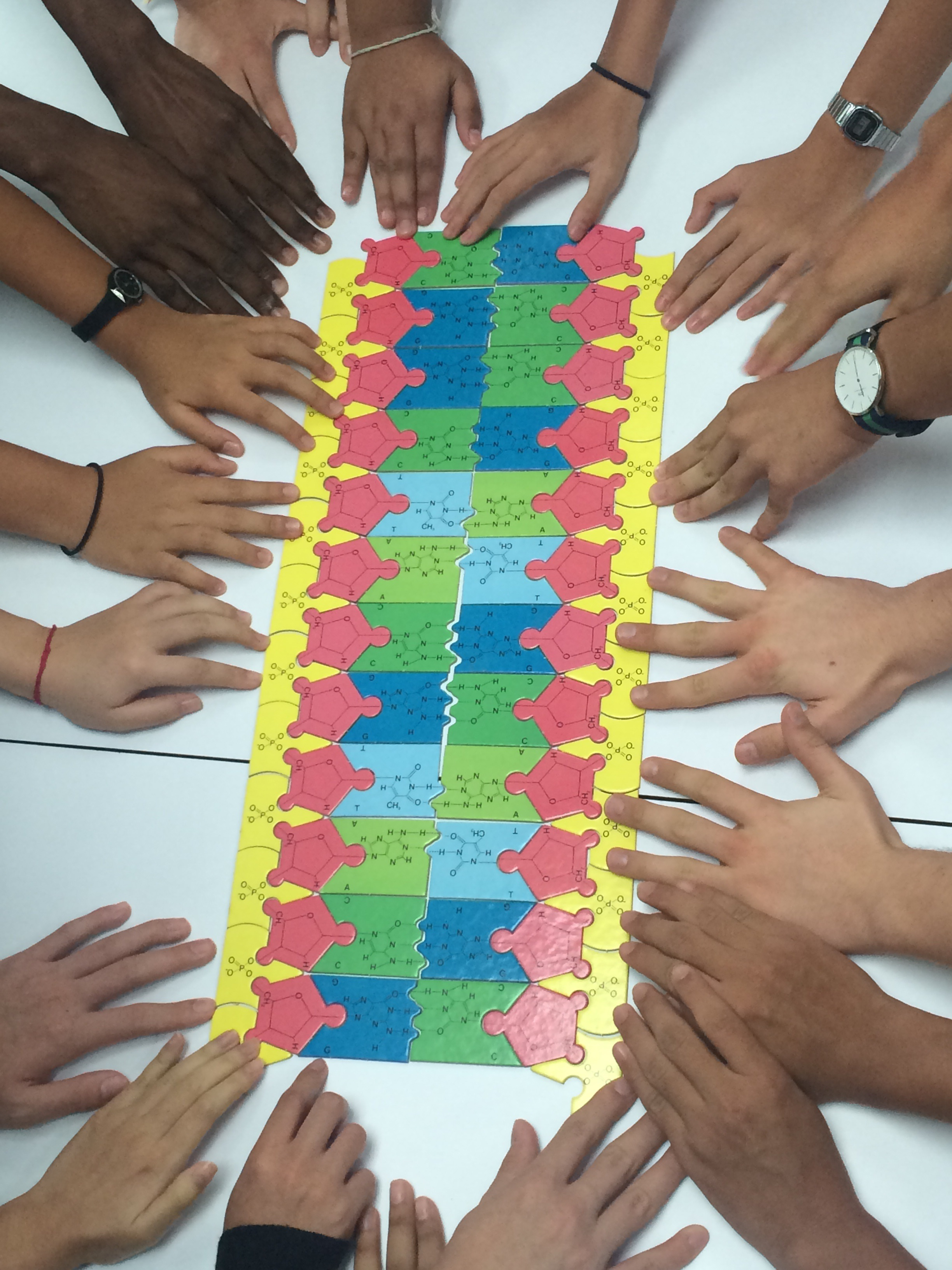 2 6 Making Models Dna The Nature Of Science