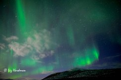 Norther lights, a magical display entrances the viewer.