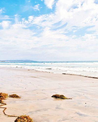Pacific Beach, CA Kelp and surf photo