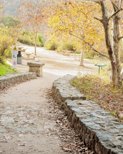 stone hiking trail and gold trees